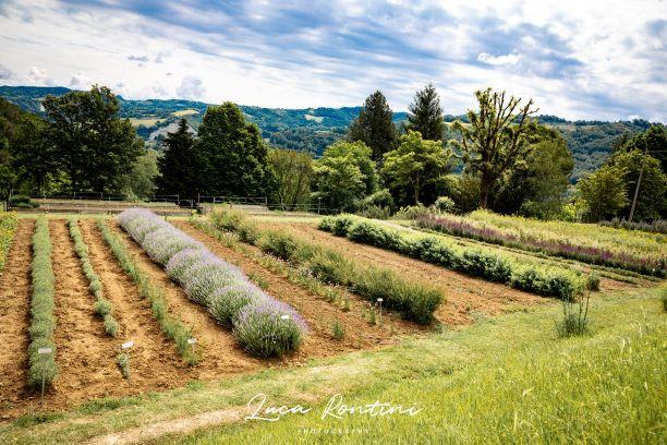 Giardino delle Erbe di Casola Valsenio