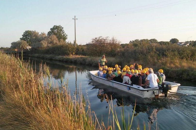 In barca alla ricerca dei fenicotteri alla Salina di Cervia