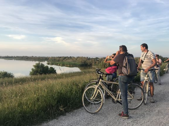 la pedalata dei fenicotteri